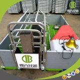 La vente chaude a galvanisé le matériel personnalisé par caisse de cochonnée d'alimentation de volaille