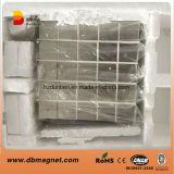 N40 magnetiseerde axiaal de Magneet van het Neodymium van het Blok voor Generator