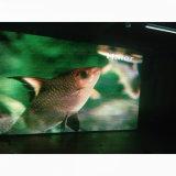 Producto caliente P6mm xxx de vídeo LED de alta definición, pantalla LED fiable P6