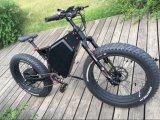 [ألومينوم لّوي] إطار كهربائيّة دراجة [3000و] سمين إطار العجلة [إ] دراجة