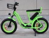 電気雪の脂肪質の電気バイク