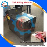 Os peixes matando Filetagem Limpeza da Máquina
