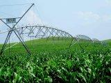 Jardin d'approvisionnements agricoles de qualité Système d'irrigation à pivot central pour le désert