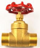 Válvula de porta de bronze de 1 polegada Pn16