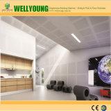 MGO perforé plafond matériel acoustique pour l'Auditorium