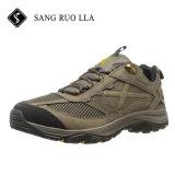 Os homens respirável caminhadas sapatos provenientes da China fábrica de calçados