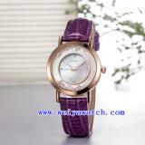 Concevoir la montre de luxe de femme de montre (WY-036A)
