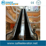 Poupança de energia estável escada rolante