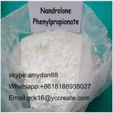 Il Nandrolone steroide grezzo Phenylpropionate 62-90-8 di Durabolin della polvere per rinforza il muscolo