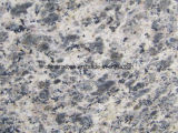 Mosaico de granito color Leopark chino para el piso y mostrador