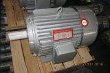 Motor de inducción trifásico de la serie de la alta calidad Y2