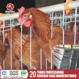 Клетка слоя цыпленка птицефермы автоматическая с фидером