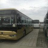 Bus elettrico della città di vendita calda per pubblico