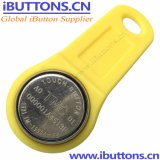 Le contrôle des accès Ibutton clé avec Fab jaune pour les portes et serrures