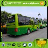 Qualität Shaolin 36-40seats 9m hinterer Motor-Bus