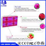 Lo spettro completo LED coltiva la pianta della lampada LED coltiva 300W chiaro