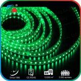 L'indicatore luminoso verde SMD5050 del Ce 10mm ha evidenziato la striscia dell'indicatore luminoso dell'indicatore luminoso di striscia 220V LED per la decorazione della costruzione