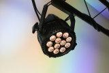 Rasha im FreienIP65 imprägniern DMX helles 6in1 Rgbaw+UV 12X18W LED NENNWERT Stadiums-Licht