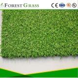Grass relva artificial para a Escola Parque Infantil (MP)