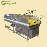 Ligne de lavage recouvrante remplissante complètement automatique machine de nettoyage de jeune noix de coco de légume et de fruit de balai