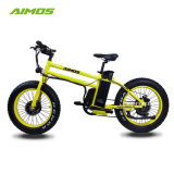 Smart 20 Inches Conceited Draws Snow Electric Bike with Two Motor