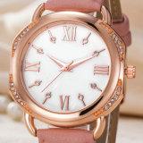 Custom Mesdames montres à quartz de cuir wist, femme de regarder en alliage (WY-17045)
