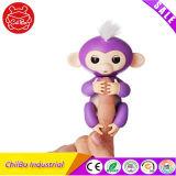 Alevinos de púrpura bebê Monkey para Dom Toy