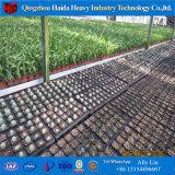 Система парника полиэтиленовой пленки Qingzhou Hydroponic для сбывания