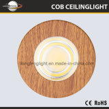 China 5W Downlight superficie pequeña monta Spotlight COB