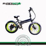 4.0脂肪質のタイヤの小型極度の小型の電気バイク