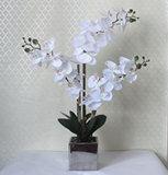 3-Branch 28 blanco perla Flores artificiales orquídeas con chapado de plata de Plaza de la Olla de cerámica