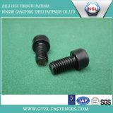 Tornillos de casquillo de la pista de socket del hexágono DIN7991 con negro
