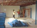 ギニーのアフリカの競争価格のプレハブの家のプロジェクト
