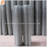 Faible Carbone/fil de fer galvanisé treillis soudés