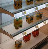 Venta caliente bombilla LED fabricados en China publicidad interior LED de luz del tubo Tubo Fluorescente T8