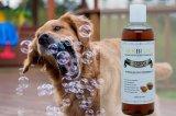 Естественные шампунь и проводник собаки для кожи Ithy