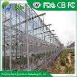 Structure en acier galvanisé Couvercle en verre utilisé les serres commerciales