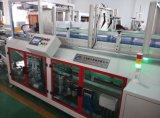 Máquina de Llenado automático de envases de bebidas alcohólicas Wj-Lzx-18f