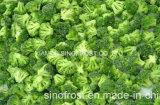 IQF Broccoli, Bevroren Broccoli, Bloemen/Besnoeiingen/Stelen
