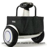 Rad-Roller-elektrische Roller des China-Lieferanten-Roller-2 mit Cer