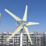 La coscienza è suggerita! 600W 24V con la turbina di vento delle 5 lamierine