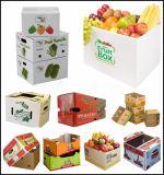 과일 상자