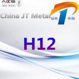 H12 de Plaat van de Pijp van de Staaf van het Staal van het Hulpmiddel met Beste Kwaliteit en Prijs