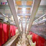 La granja gallina ponedora jaula Estructura de acero Coop aves con sistema de equipos de la jaula automático