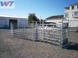 Rápida instalación solar de montaje de pollo de granja establo casa refugio de aves de corral Fábrica taller/Villa/Garaje Estructura de Acero Construcción metálica