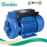 Dk 금관 악기 임펠러 표면 각자 프라이밍 Gardon 물 원심 펌프