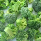 New Rice IQF Frozen Broccoli