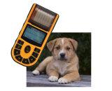 Ветеринарный ручной Electrocardiograph машины цифров ECG одиночного канала с отчетом о измерения для ветеринара