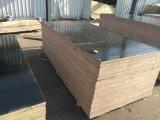 Madera contrachapada del negro de la madera contrachapada de la construcción/de la cara de la película de Brown