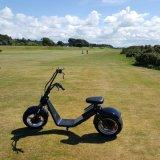 Motorino elettrico di Harley della rotella di Ecorider 60V due con strumentazione antifurto